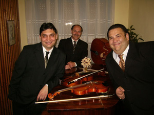 Champagne Strings Trio